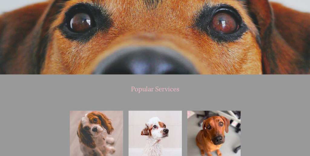 rikkiwebster.com website design and build groom and glow dog groomer bushey 1