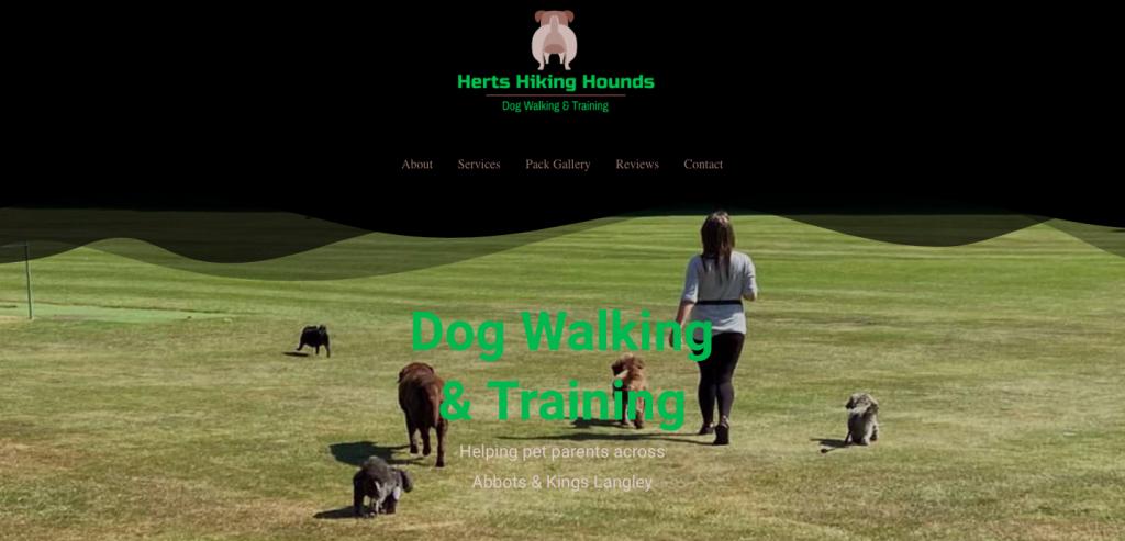 herts hiking hounds dog walking abbots langley rikkiwebster.com 1